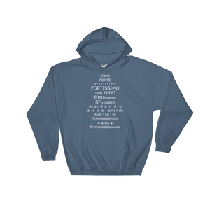 Musical Terminology Lesson Hoodie