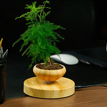 Magnetic Levitating Bonsai Plant Pot (3 Piece Set)