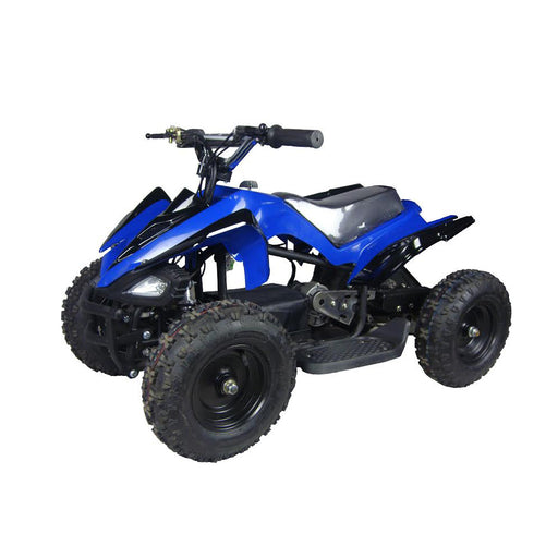 Mars 350W 24V Electric Ride-On ATV for Kids