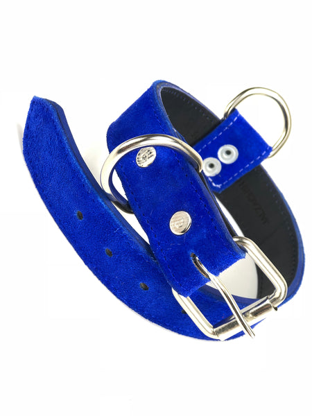 Blue Suede Dog Collar DC78