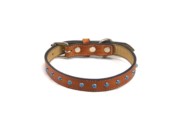 Morris dog collar SKU#BC46