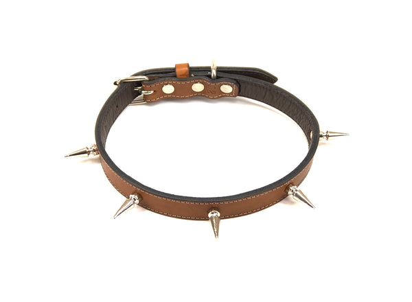 Roble dog collar SKU#BC20