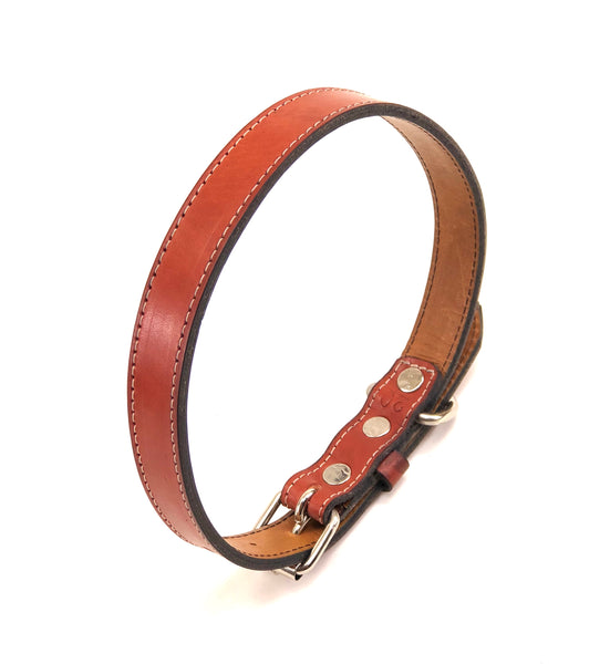 Molly dog collar SKU#MC73