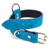 Turquoise Suede Dog Collar DC102