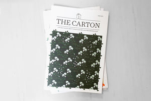 The Carton N. 16, Extinction