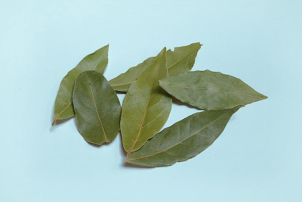 "Bay Leaves, ""Dáphne"""