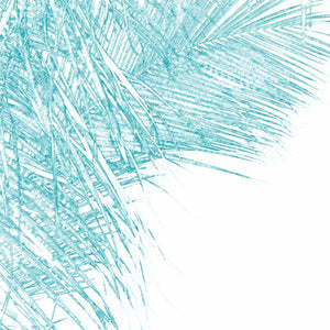 contemporary palm tree print artwork by andy baker of bald art