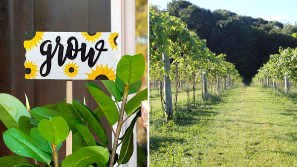 Garden Sign Paint & Sip | Hawk Ridge Winery in Watertown CT | 4.15.21 | 6-8 PM