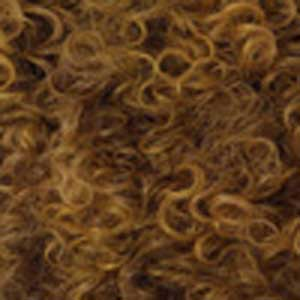 Outre Ear-To-Ear Lace Wigs S4/27/144 Outre Big Beautiful Hair Synthetic Lace Front Wig - 3B RHYTHM RINGLETS