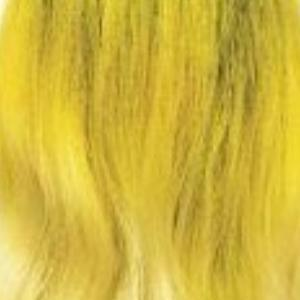 Zury 360 Circular Lace Wigs 3T YELLOW Zury Sis Synthetic 360 Free Part Lace Front Wig - 360 LACE H JALYN