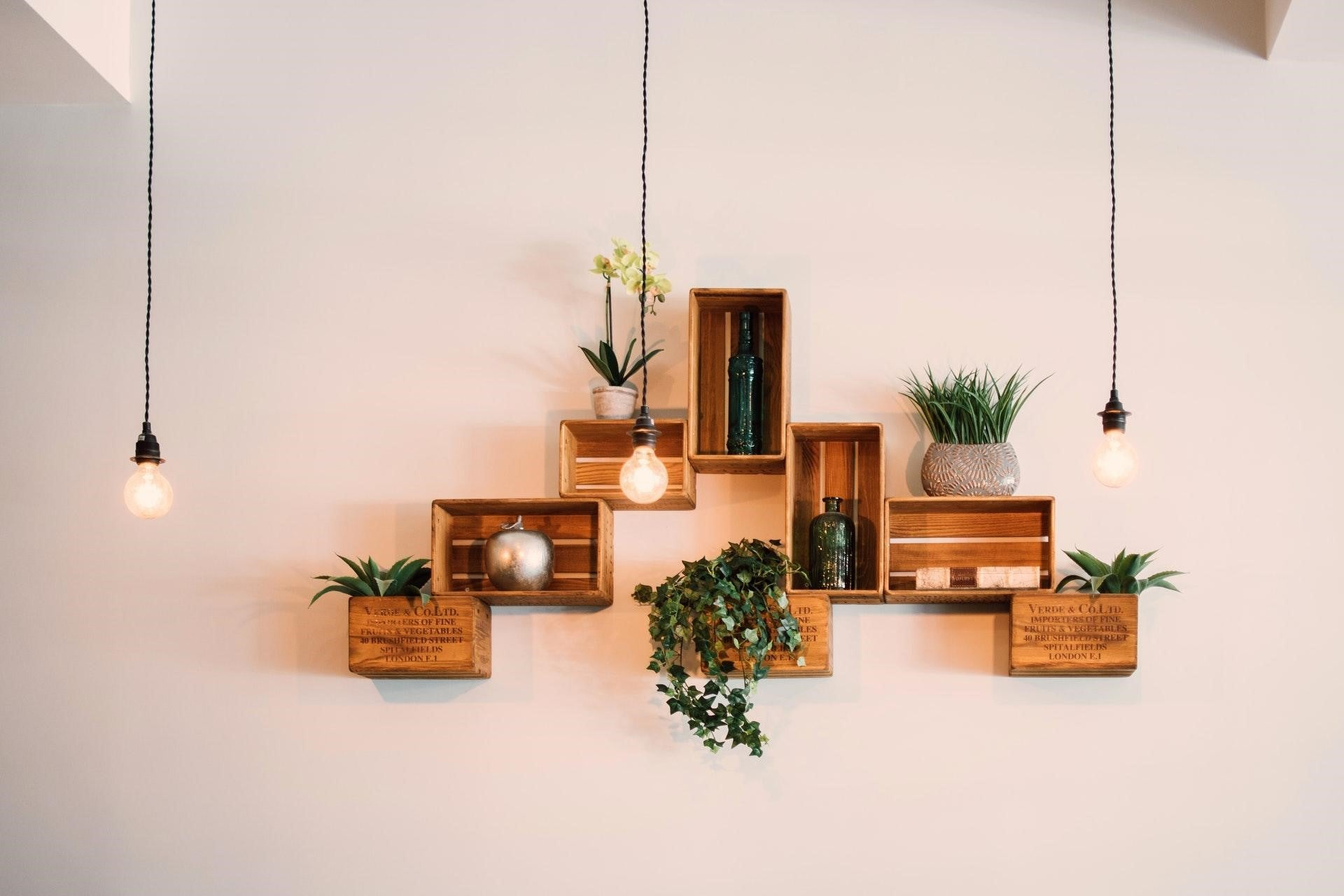 Eco Living - How To Infuse Nature-Inspired Elements Into Your Decor Using Greenery