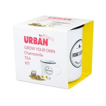 Urban Greens Grown Your Own Chamomile Tea Kit