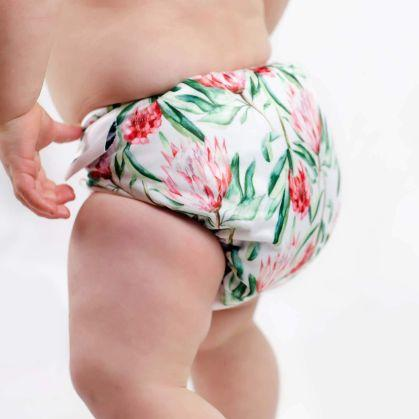 Designer Bums Art Pop Ai2 Nappy, Sugarbush