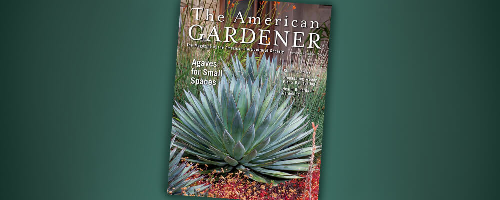 B&B-gardeners-reading-list-american-gardener-cover