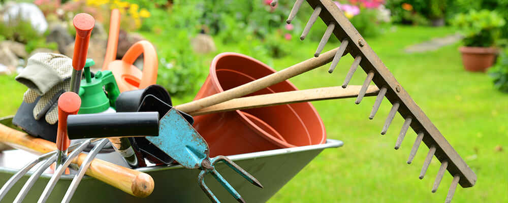 brent-and-becky-bulbs-planning-fall-plantings-gardening-tools
