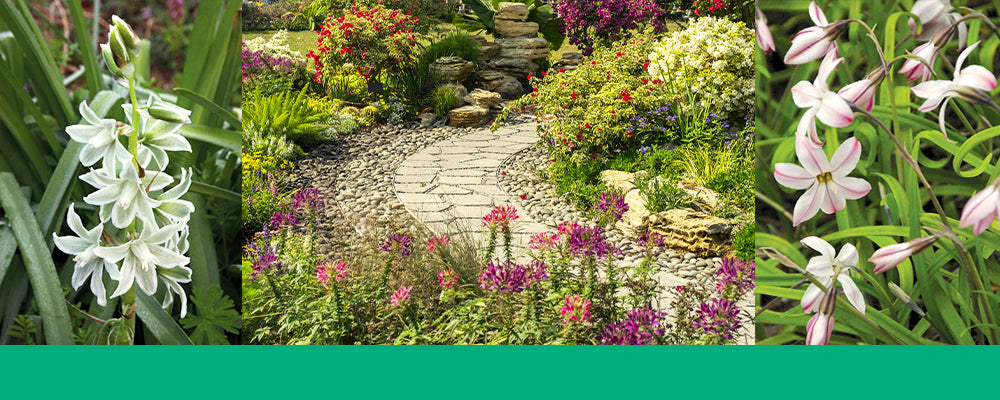 brent-and-becky-header-iphion-natural-garden