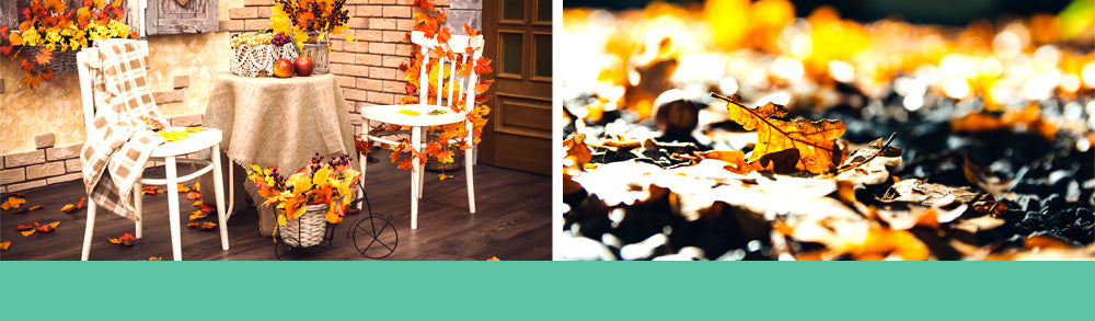 Fall Gardening Checklist header - Fall Leaves and Outside Patio