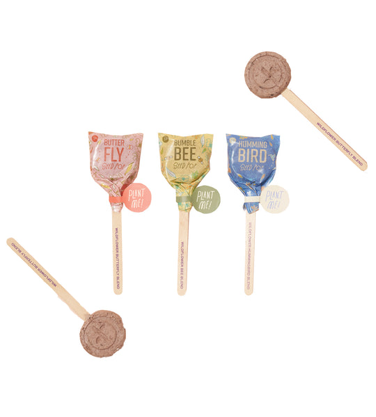 Seed Lollipop - Pollinator - 3 Pack
