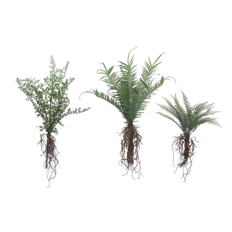 Faux Ferns with Exposed Roots