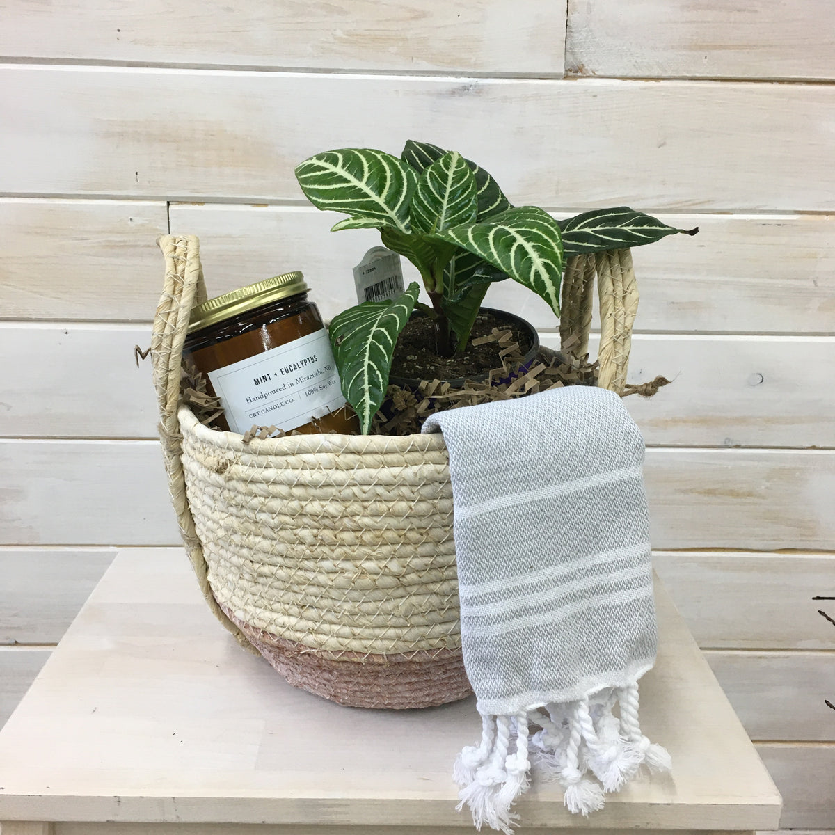 Mothers Day Basket Zebra Plant & Candle