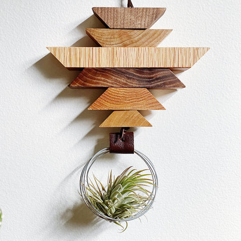 Modern Southwest Air Plant Wall Hanging no.45