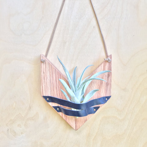 Hanging Chevron Air Plant Wall Hanging