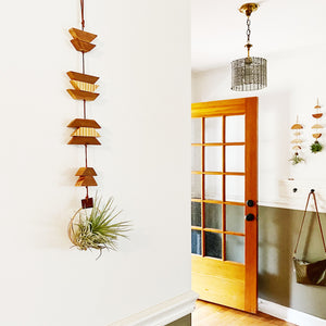 Modern Southwest Air Plant Wall Hanging no.35