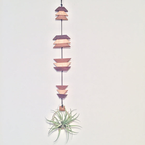 Modern Southwest Air Plant Wall Hanging no.10