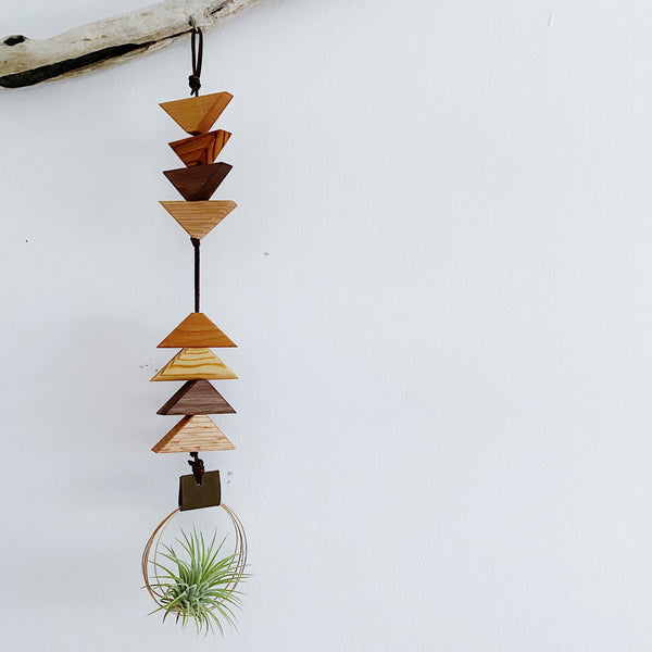 Modern Southwest Air Plant Wall Hanging no.64