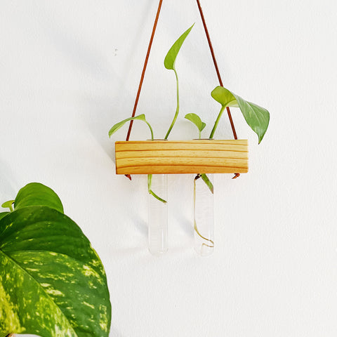 Hanging Propagation Vase - Double - Heart Pine