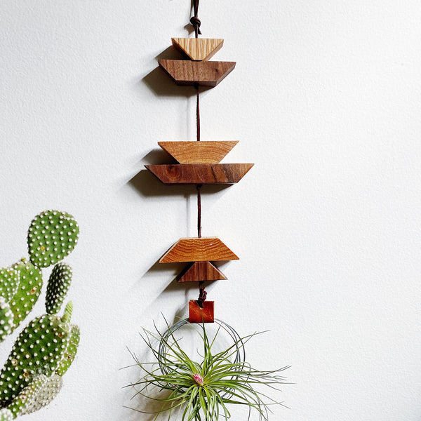 Modern Southwest Air Plant Wall Hanging no.41