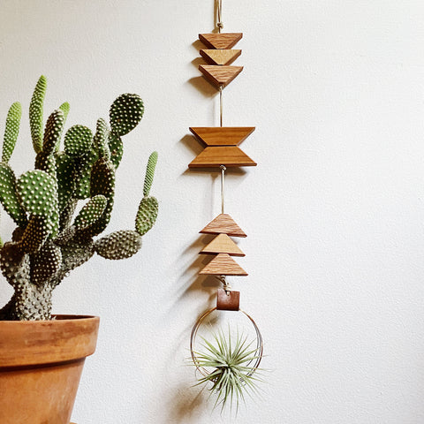 Modern Southwest Air Plant Wall Hanging - Wander