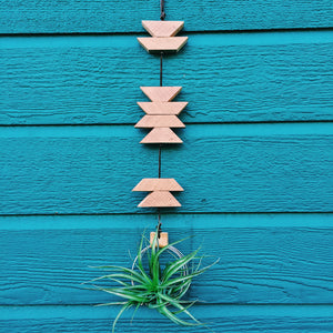 Modern Southwest Air Plant Wall Hanging no.25