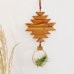Warm Dunes Air Plant Wall Hanging