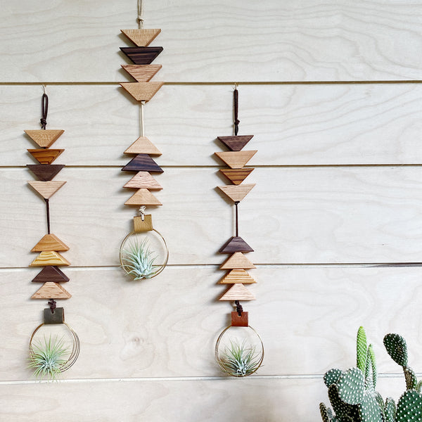 Modern Southwest Air Plant Wall Hanging - To the Sky, To the Earth