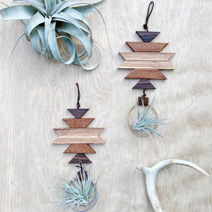 Modern Southwest Air Plant Wall Hanging no.48