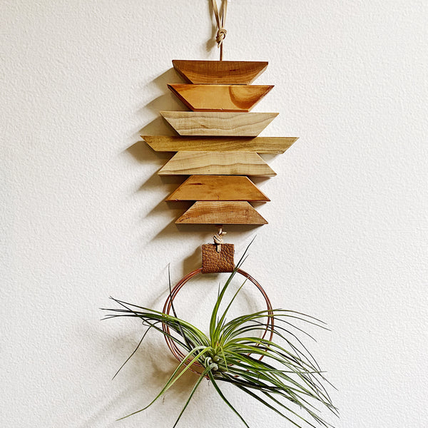 Modern Southwest Air Plant Wall Hanging no.40