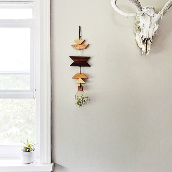 Modern Southwest Air Plant Wall Hanging no.61