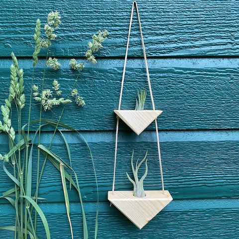 Triangle Air Plant Hanger x2