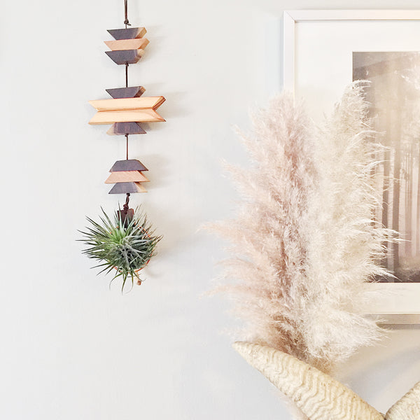 Modern Southwest Air Plant Wall Hanging no.14