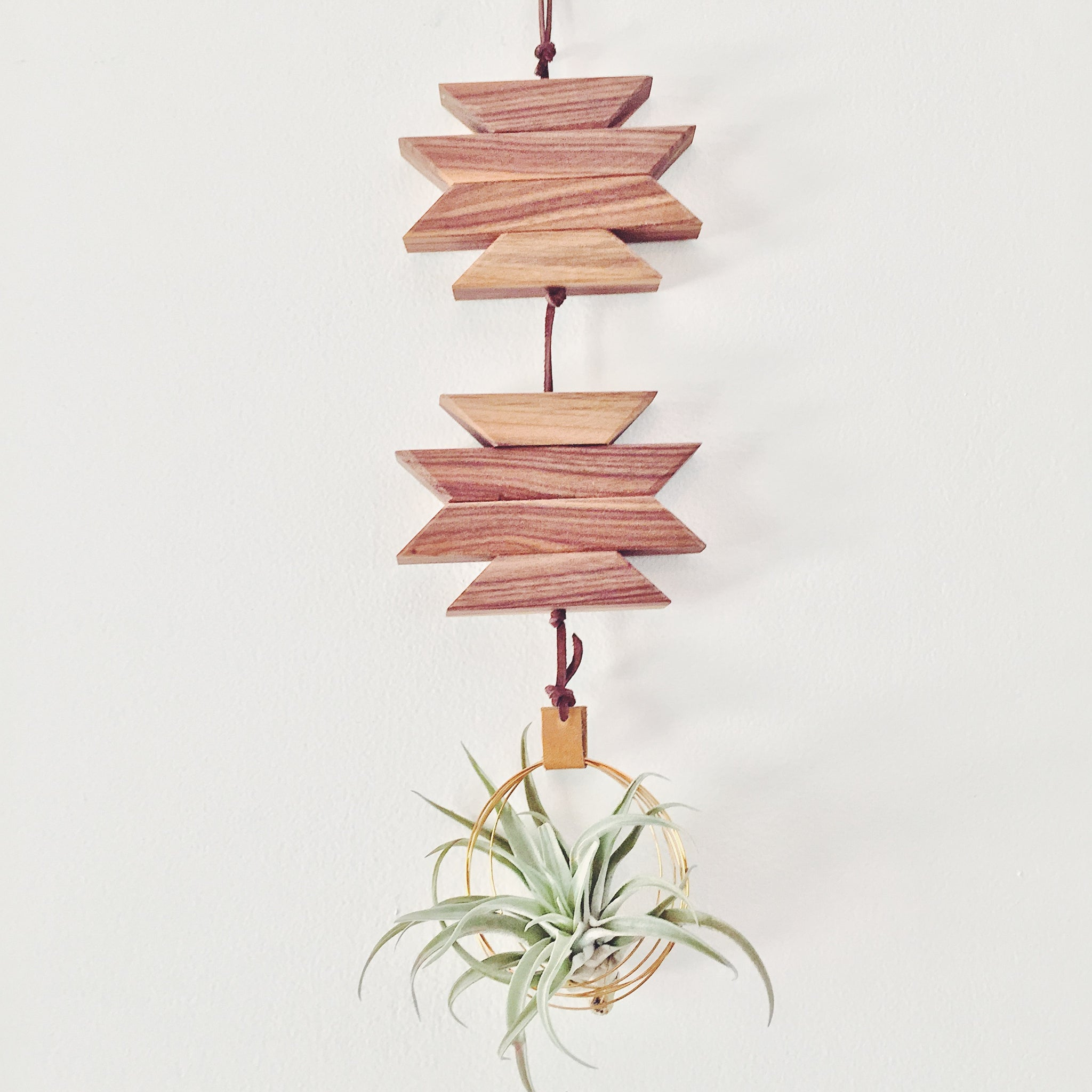 Modern Southwest Air Plant Wall Hanging no.7