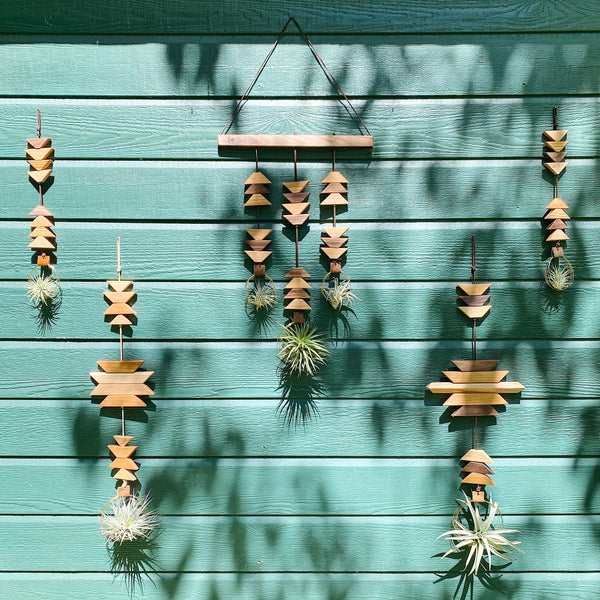 Modern Southwest Air Plant Wall Hanging - Into the Dunes