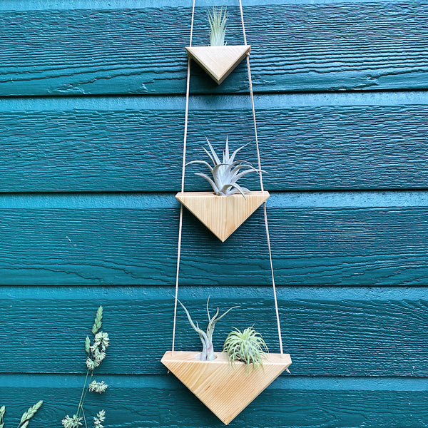 Triangle Air Plant Hanger x3