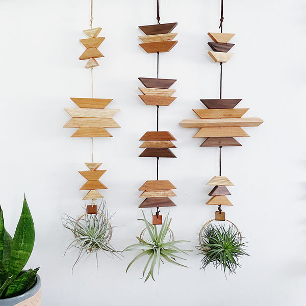 Modern Southwest Air Plant Wall Hanging no.63