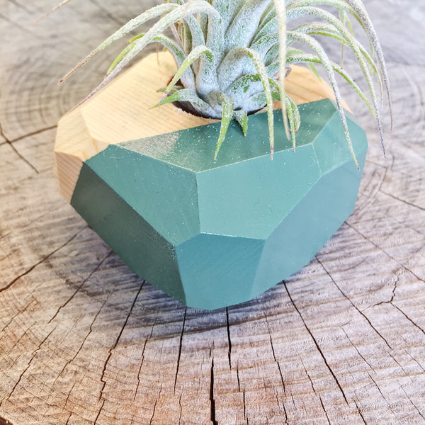 Gem Air Plant Holder - Medium