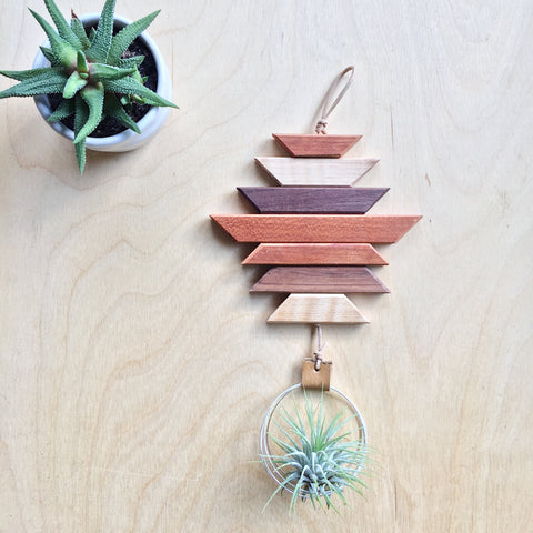 Modern Southwest Air Plant Wall Hanging no.12