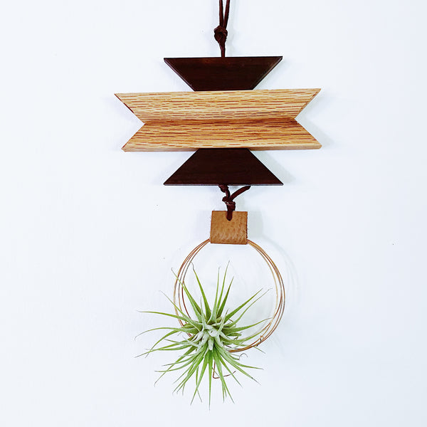 Modern Southwest Air Plant Wall Hanging no.49