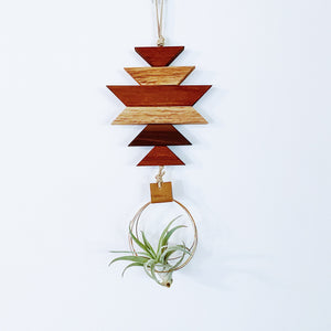Modern Southwest Air Plant Wall Hanging no.58