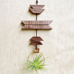 Modern Southwest Air Plant Wall Hanging no.36