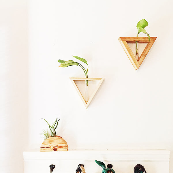 Plant Propagation Vase Frame - Triangle